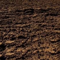 Il sacro suolo