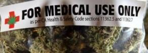 Cannabis, Acerbo: «Legalizzazione è buon senso. Bene Cappato, a Gasparri un po' di giardinaggio non farebbe che bene…»
