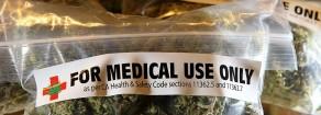 Pellegrini esce dal carcere, ma senza la cannabis terapeutica