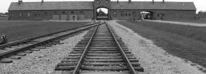Orgoglio e Genocidio  L'etica dello sterminio nella Germania nazista