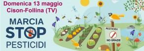 Note sull'inquinamento da pesticidi in Italia