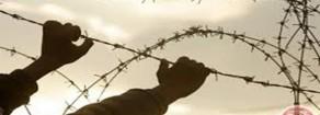 Settimana del Prigioniero Politico Palestinese