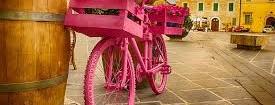 Al Sud non si pedala: Il Giro d'Italia si tiene alla larga  Strade con troppe buche?