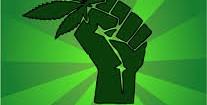 Noi vogliamo legalizzare la cannabis e mettere fuorilegge razzismo e fascismo