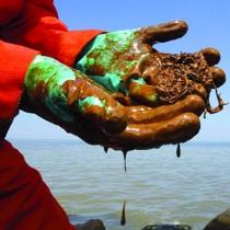 Scuola: occhio alla propaganda pseudo ambientalista e alle operazioni di greenwashing