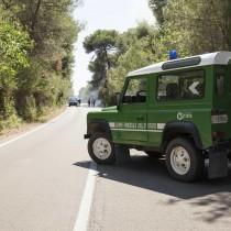 Ricostituire e demilitarizzare il Corpo Forestale dello Stato. Il Parlamento si dia una mossa per cancellare i disastri causati dalla legge Madia