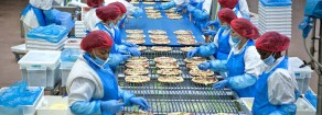 Rifondazione: Italpizza, maxi-processo contro lavoratori. 120 sotto inchiesta