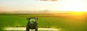 Il contadino invisibile e la strenna di Natale della Signora Ministro dell'agricoltura Bellanova